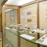 Muestra del contenido del museo arqueológico Novelda