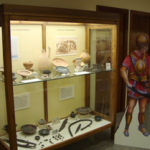 Contenido Museo Arqueológico Novelda