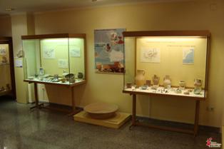 Contenido del museo arqueológico de Novelda