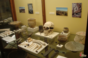 Edad del Bronce - Museo arqueológico Novelda